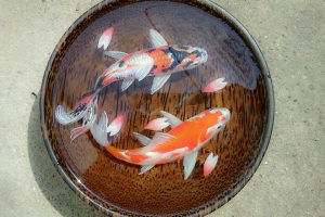 3D Painting Plate SAFIMEX handicraft