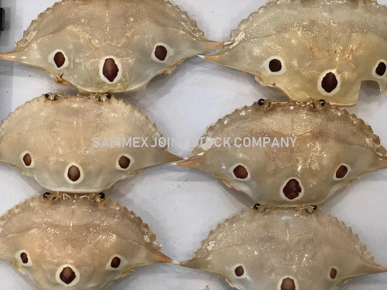 Crab Shell SAFIMEX