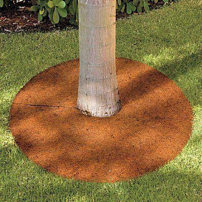 coconut coir mulch