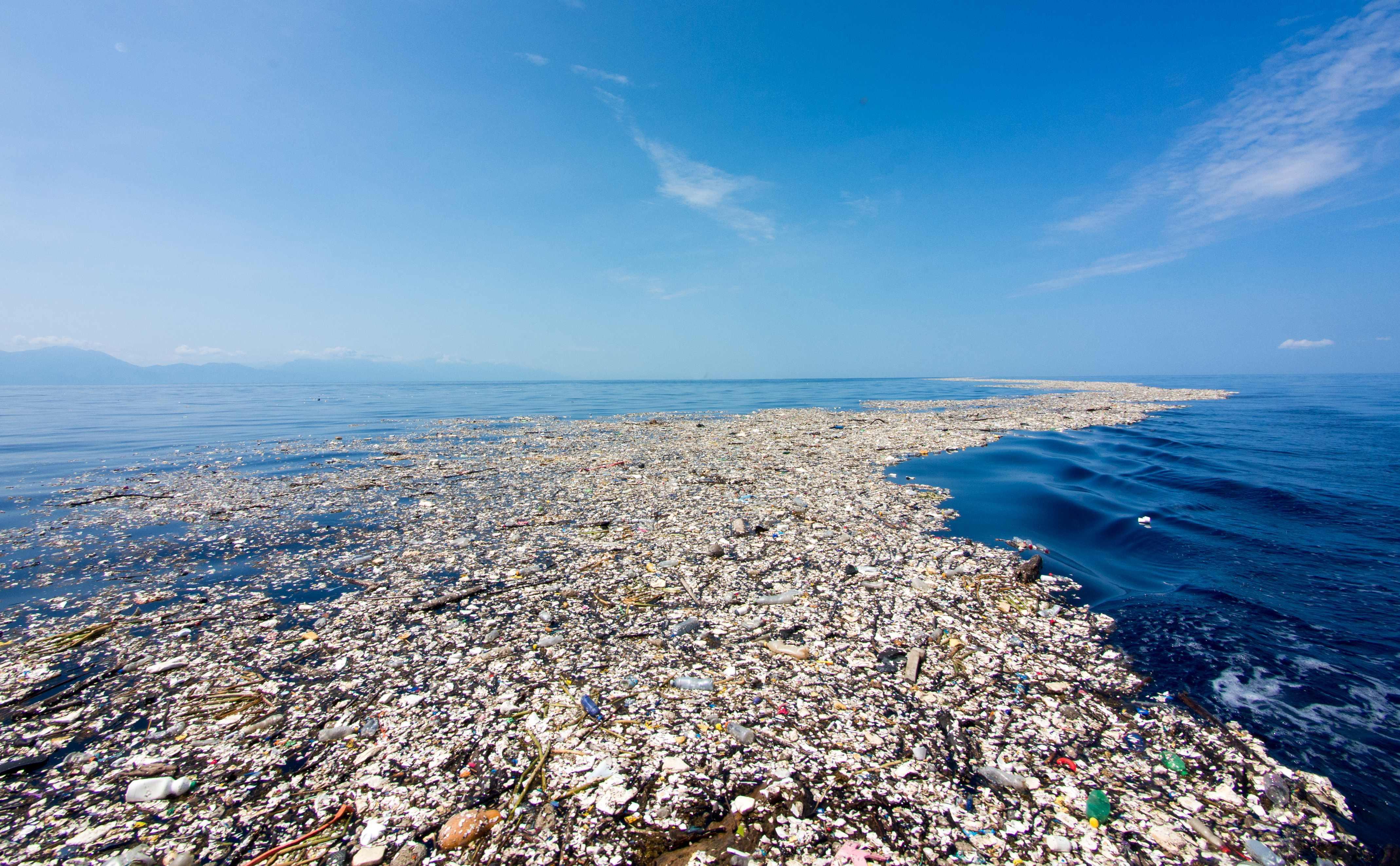 disposable plastic pollution