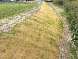 Coir-mat-for-soil-erosion-control